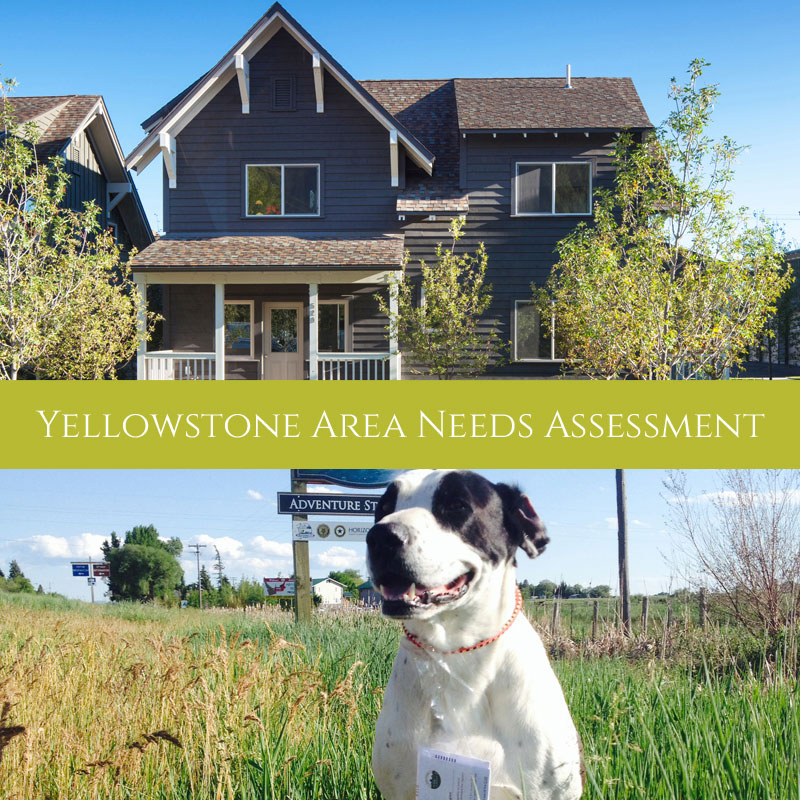 Yellowstone Area Needs Assessment